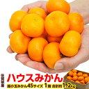 柑橘 みかん JAからつ 訳有 超小玉 4S 約1.2キロ ...