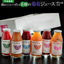 平岩農園 「種ありぶどうだけで作る6種のぶどうジュース」 180ml瓶×6本 ※常温 送料無料