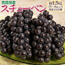 葡萄 ぶどう ブドウ青森県産 黒ぶどう スチューベン 5~8房 約1.5kg 送料無料 常温又は冷蔵