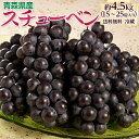 葡萄 ぶどう ブドウ青森県産 黒ぶどう スチューベン 約4.5kg 15~24房 送料無料 冷蔵