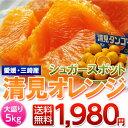 《送料無料》愛媛・三崎産  「シュガースポット清見オレンジ(訳あり)」 M〜3L 約5kg