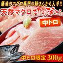 ハラモ(中トロ)限定!! 『天然マグロ』 切り落とし (メバチ・キハダ) 300g ※冷凍 sea