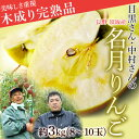 長野県須坂産 目黒さん&中村さんの「名月りんご」  約3キロ8〜10玉 frt ☆