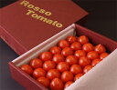トマトロッソトマト 愛知産 S〜Lサイズ