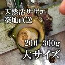 [スーパーSALE]天然活サザエ 大サイズ 海鮮 バーベキュー 200-300g 約1kg(4-5個)(築地直送)長崎 他 BBQ 【サザエ200gx1K】