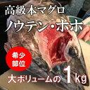 最高級本マグロの希少部位(ホホ肉、ノウテン)[築地直送]計1kg 頬肉 脳天 鮮魚 バーベキュー 海鮮 BBQ【本マグロ脳天+ホホ肉1K】