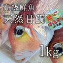 最高級アマダイ 甘鯛 生 超特大サイズ [豊洲直送]超特大約1kg前後(1尾あたり) 日本
