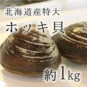 活けホッキ貝 北海道産 計1kg(約500g/個x2) 豊洲直送 高級貝類 北寄貝 ウバガイ【ホッキ...