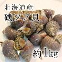 活イソツブ 活磯ツブ ツブ貝 北海道産 高級貝類 1kg [...