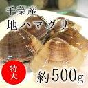 [鯛の塩焼き同梱用]高級地ハマグリ(千葉産)500g(4-6個) 蛤 お吸い物用 築地直送 【地ハマ0.5K】