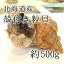 活けの殻付きツブ貝 北海道産 特大サイズ 約+500g/個 ...