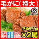 【送料無料】特大 毛ガニ 毛蟹 浜茹で毛...