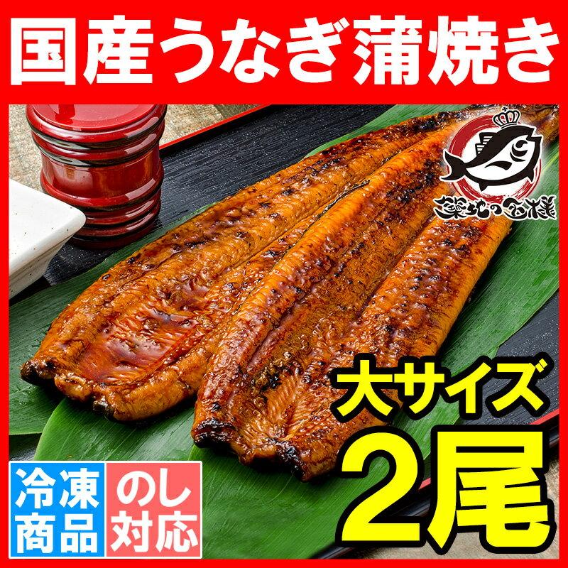 特大!国産うなぎ蒲焼き<平均165g前後×2尾>柔らかうなぎを丁寧に焼き上げた!まさに国産…...:tsukiji-ousama:10000436