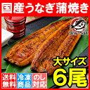 【送料無料】 特大!国産うなぎ蒲焼き 平均165g前後×6尾...