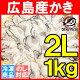 かき 牡蠣<広島産カキ1kg・むき身・大粒2Lサイズ>殻剥き不要&小さくならない加熱用で濃…