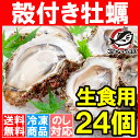 【送料無料 生牡蠣 殻付き 生食用カキ】生牡蠣 24個入り