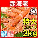 送料無料 赤海老 赤えび 2kg 特大 L2 30〜60尾 ...