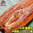 【送料無料】超特大!うなぎ蒲焼き 平均330g前後×2尾 中...