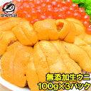 【送料無料】うに 冷凍生うに 無添加 100g×3パック 最...