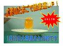 【大寒たまご】【送料込】大寒のたまご Mサイズ 10個×3パック 05P10Jan15
