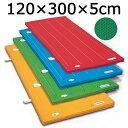 体操マット 滑り止め付 エステル カラーマット 体操カラーマット SGマーク付体操マット 120×300×厚5cm 送料無料