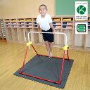 鉄棒 室内 子供用 ツムラこども鉄棒 耐荷重70kg 組立不要 高さ70cmから 逆上がりのコツDVD付