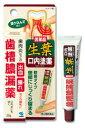 【第3類医薬品】小林製薬 生葉口内塗薬 歯槽膿漏薬 (20g) ツルハドラッグ