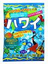 ヘルス エステ気分アロマ ハワイ (40g) 入浴剤...