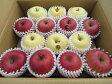 【送料無料】 青森県産りんご 贈答用 サンふじ&金星5kg青森 りんご 5kg 送料無料