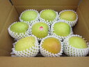 【送料無料】 青森県産りんご 贈答用 王林 3kg青森 りんご 3kg 送料無料 贈答用りんご
