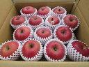 【送料無料】 青森県産りんご 贈答用 サンふじ5kg青森 りんご 5kg 送料無料/贈答用りん