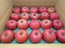 【送料無料】 青森県産りんご 家庭用 サンふじ5kg青森 りんご 5kg 送料無料 家庭用りんご