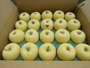 【送料無料】 青森県産りんご 家庭用 金星10kg家庭用りんご青森 りんご 10kg 送料無料