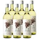 《送料無料》林農園 五一わいん 竜眼 酸化防止剤 無添加 白ワイン 辛口 720ml × 6本 セット