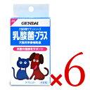 《送料無料》ゲンダイ (GENDAI) 現代製薬 乳酸菌・プラス 48粒 × 6個
