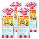 《送料無料》グリーンズ北見 北海道オニオンスープ 50g (5g×10本) × 4袋