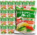 桜井食品 ベジタリアンのためのラーメン みそ味 100g × 20袋入 【らーめん インスタント 即席麺 味噌 みそラーメン】《あす楽》