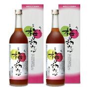 《送料無料》中野BC 梅の初恋 瓶 720ml 箱入 × 2本《あす楽》
