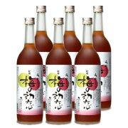 《送料無料》中野BC 梅の初恋 瓶 720ml 箱入 × 6本 ケース販売 《あす楽》