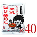 《送料無料》 ベジタリアンの豆乳ピリ辛めん 40食分セット[桜井食品]《あす楽》