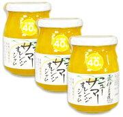 伊豆フェルメンテ 東伊豆産ニューサマーオレンジジャム 300g × 3本 【オレンジジャム ジャム オレンジ】《あす楽》