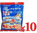 《送料無料》 野村煎豆加工店 ミレービスケット 超ビッグパック 480g(30g×16袋) 10