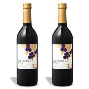 巨峰ワイナリー ブルーベリーワイン(甘口) 720ml × 2本 《あす楽》