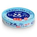千葉産直サービス 房総漁師村 ミニとろイワシ 100g [トロ缶シリーズ]《あす楽》