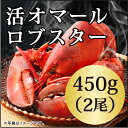 ◆活オマールロブスター(450gx2尾)お買い得/カナダ直輸入/活/オマール 海老/ロブスター/還