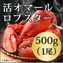 ◆活オマールロブスター(500gx1尾)カナダ直輸入/高級/肉厚/海老/還暦/父の日/バーベキュー/ ...