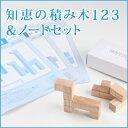 ◆知恵の積み木123&ノート3冊セット幼児〜/日本製/国産 天然木/教材/特別支援向け/入学祝/エジソンクラブ