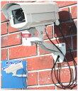 SA-50845 高級ダミーカメラ /屋外防雨仕様 SA-3400D 点滅無しタイプ