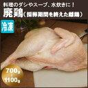 廃鶏 (ハイケイ・採卵期間を終えた雌鶏) 700g?1100g 丸どり 丸鶏 丸鳥 中抜き 【冷凍便