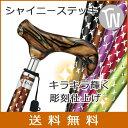 杖 折りたたみ 軽量 送料無料 アルミ製愛杖 SC シャイニー ステッキ【色柄:全5色 ●ス